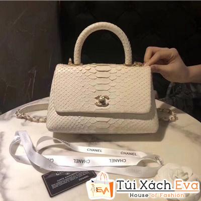 Túi Xách Chanel Coco Siêu Cấp Da Rắn Màu Kem
