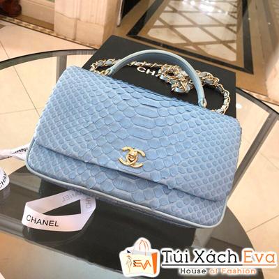 Túi Xách Chanel Coco Siêu Cấp Da Rắn Màu Xanh Dương